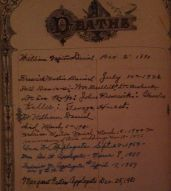 Deaths recorded in Dr. Wm Daniel's family bible, including Maggie Patten Applegate