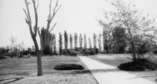 Monahans swimming pool, 1949