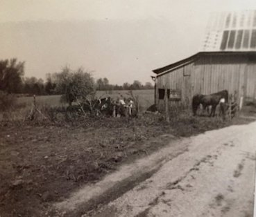 Barn in Corydon where horses were boarded (Mrs. Ashton's)